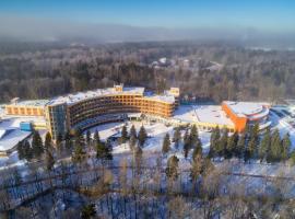 """Оздоровительный комплекс """"Снегири"""", hotel near New Jerusalem Monastery, Rozhdestveno"""
