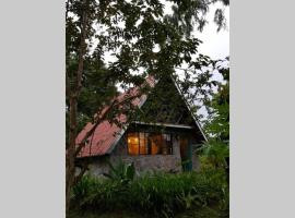 Cabañita Pet Friendly, cabin in Volcán