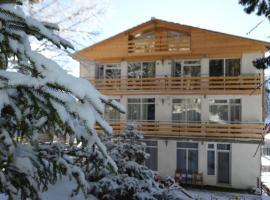 Apartment Shale, отель в Бакуриани
