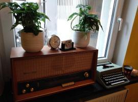 Home Trietje, vakantiehuis in Gent