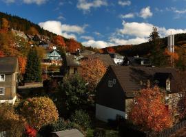 Landhaus Silbach, apartment in Winterberg