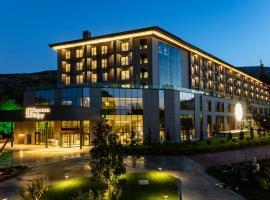 NG Enjoy, hotel in Sapanca