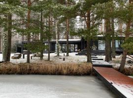 Designers Lakehouse With Jacuzzi, majoitus Hirvensalmella