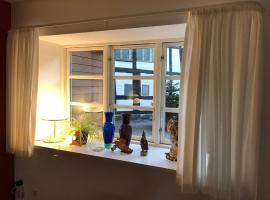 Stemningsfuld lejlighed - 3 minutters gang fra H.C. Andersens Hus, lejlighed i Odense