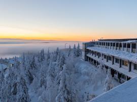 Arctic Hilltop Boutique Hotel Iso-Syöte, hotelli Syötteellä