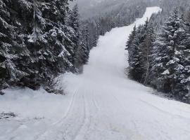 Ski Park Kartala, хотел в Благоевград