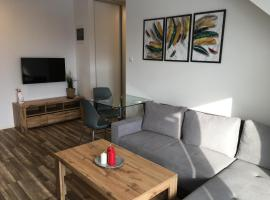apartament, hotel near Rzeszów-Jasionka Airport - RZE,