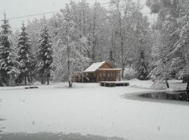 Insolite Chalet de pêche Sérénité - Bien Etre, cabin in Ban-sur-Meurthe-Clefcy