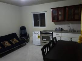 1 Bed, Bath furnished apartment close to Blue Mall, hotel i nærheden af Punta Cana Internationale Lufthavn - PUJ,