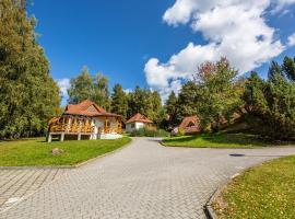 EA Hotel Na Jezeře, hotel in Horní Planá