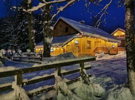 Apartamenty Kuźnice 13, hotel near Gasienicowa Ski Lift, Zakopane