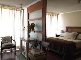 M&M Providencia Suites, apartment in Santiago