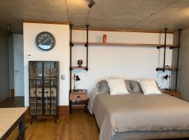 Nuevo y Hermoso Loft, en la subida de Andalue, apartment in Concepción