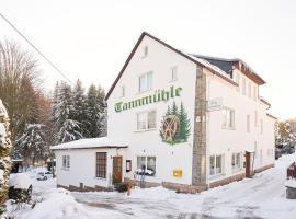 Tannmühle Hotel und Restaurant, Hotel in Callenberg