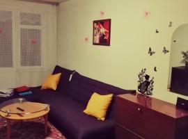 2х комнатная квартира, pet-friendly hotel in Korolëv