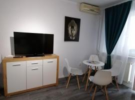 Bega Circumvalatiunii 1 Room Apartment, hotel din Timișoara