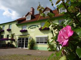 Land-gut-Hotel Schenkenberger Hof, отель в городе Делич