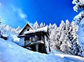 Mountain Cottage, hotel near Lubomierz Ski Lift, Lubomierz