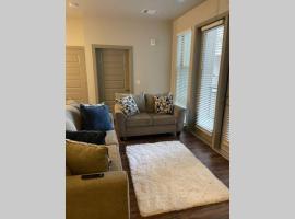 Luxury Spacious Apartment, apartment in Denver