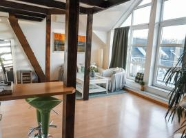 Surfer Loft with AC and sun terrace, apartment in Bonn