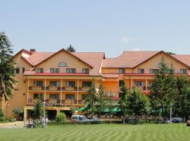 Best Western Silva Hotel, hotel in Sibiu