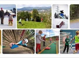 Hotell Fritidsparken, hotell i Skien