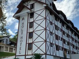 Partner Hoteis by Holz, hotel in Joinville