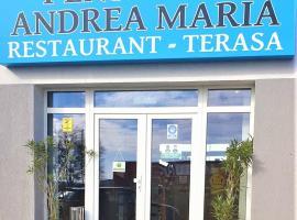 Pensiunea Andrea Maria, hotel near Timișoara Traian Vuia International Airport - TSR,