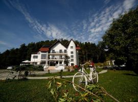 Pensiunea Baroc, отель в Брашове
