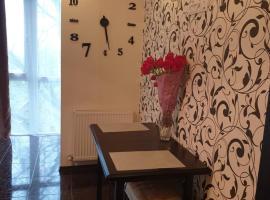 Elena's Holiday Apartment, апартаменти у місті Кам'янець-Подільский
