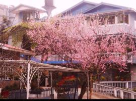 Cherry Guest House, B&B in Gangtok