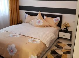 Apartament Sofy2, apartment in Băile Herculane