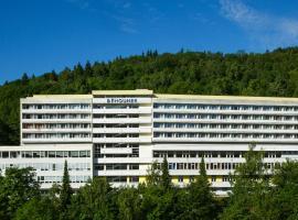 Hotel Běhounek, hotel in Jáchymov
