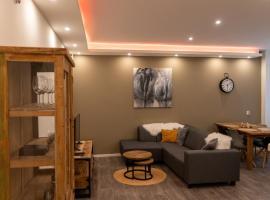 CasAnisa City Center Appartement, apartment in Leeuwarden
