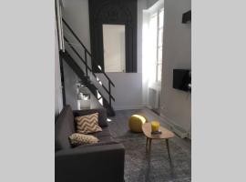 Le coquet au cœur de Toulouse, appartement à Toulouse