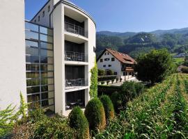 Hotel Schatzmann, hotel in Triesen