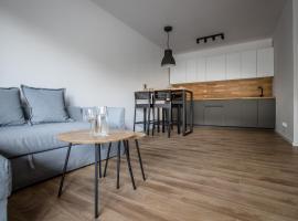 Longinus Apartament, budget hotel in Bolesławiec