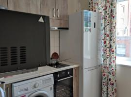 "Апартаменты у метро ""Солнечные"", apartment in Novosibirsk"