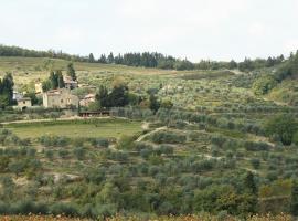 Agriturismo Podere Somigli di Lorenzo Correani, bed & breakfast a Greve in Chianti
