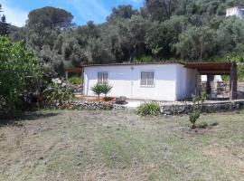 Garden House Q4527, holiday home in Carloforte