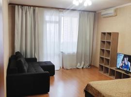 Salvador Апартаменты на Семьи Шамшиных 32, Центр, apartment in Novosibirsk