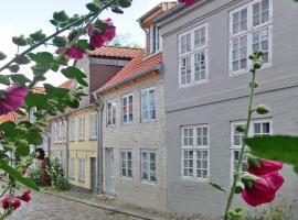 fewo1846 - Twietehus im Oluf, feriebolig i Flensborg