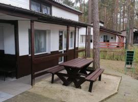 Apartament nad jeziorem, budget hotel in Trzcianka