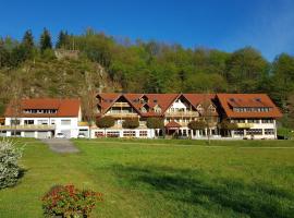 Hotel Walkenstein, Hotel in Oberwolfach