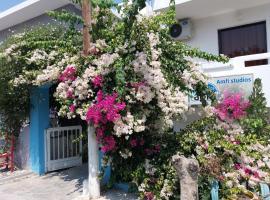 Amfi Apartments, pet-friendly hotel in Kardamaina