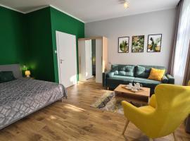 Apartament Parkowy Studio, apartment in Gniezno