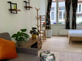 Unique house for 12 people, budget hotel in Antwerp