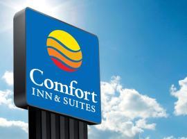 Comfort Inn & Suites Pittsburgh-Northshore, hotel in Pittsburgh