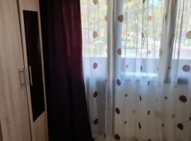 Apartament Deea Băile Herculane, apartment in Băile Herculane