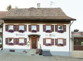 Hotel Landgasthof zum Pflug, Hotel in Steinen